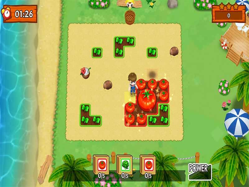 Harvest Moon: Mad Dash Destructoid